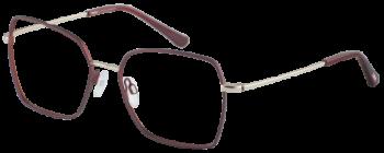 CINQUE 11066-3